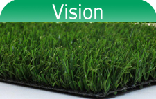 Vision Artificial Grass